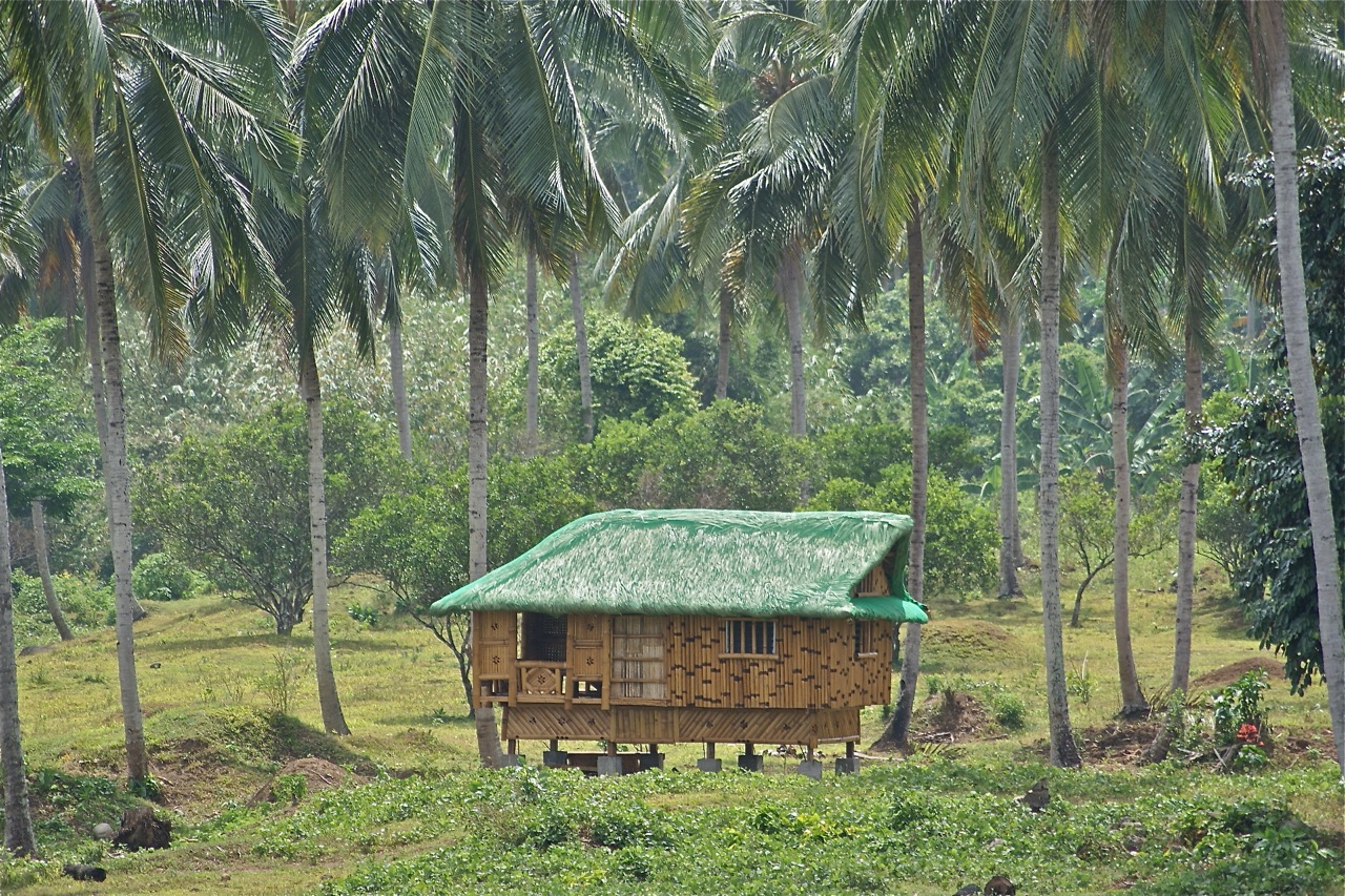 nipa hut photo