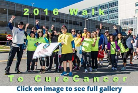 walk-to-cure-cancer-feature-image